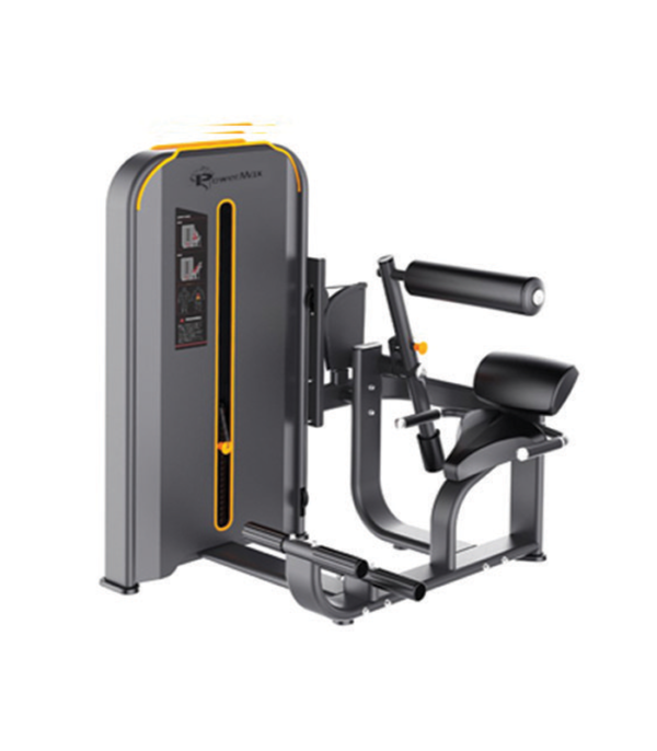 Back Exercise Machine in Gym - Verdure Wellness