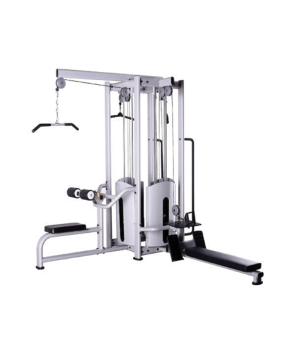 Multiple exercise bench in Gym - Verdure Wellness