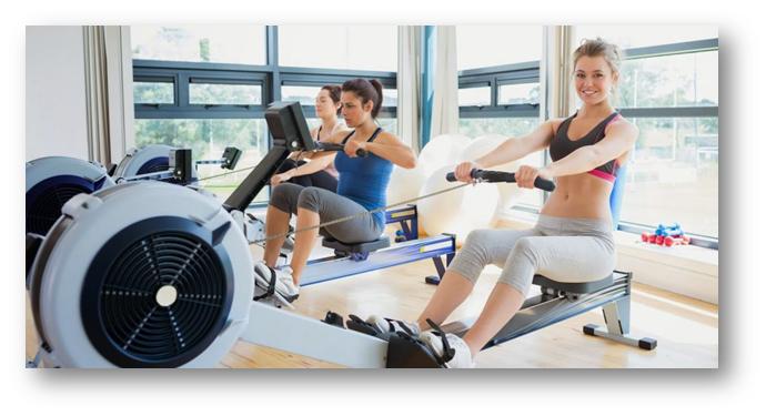 Rower - Verdure Wellness
